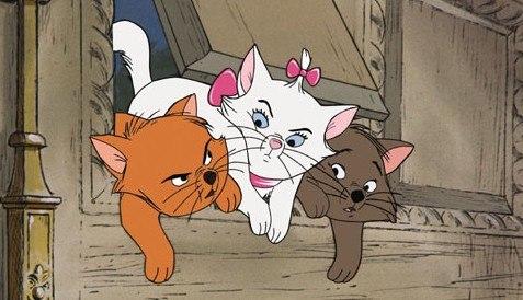 Песня каждый хочет быть котом